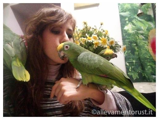 Chiara Bova e Frida Amazzone Fronte gialla